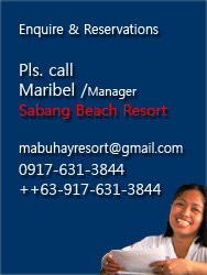 Club Mabuhay Lalaguna Resort Contact details